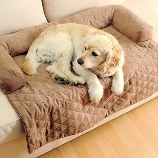 Tapacírovaná deka pre psa