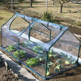 Záhradný fóliovník